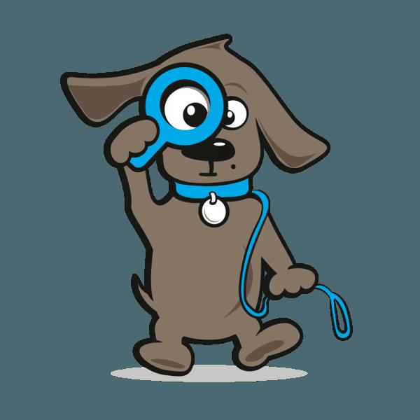 Hondenriemen en halsbanden