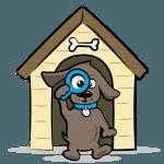 tips-slapen-wonen-hond