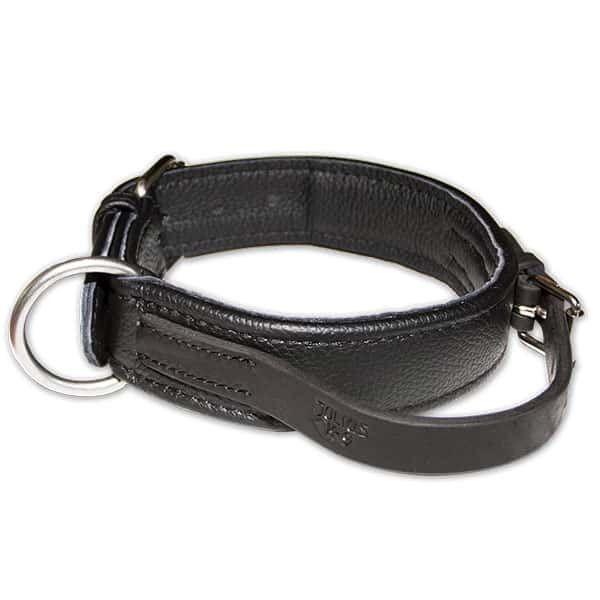 halsband-hond