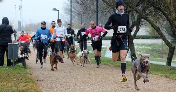 canicros training samen met je hond