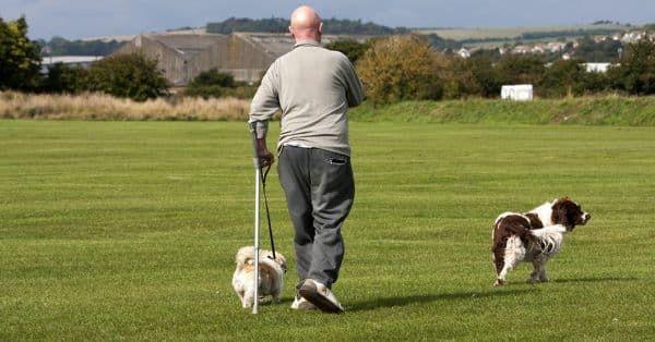 Hondenetiquette tijdens de wandeling