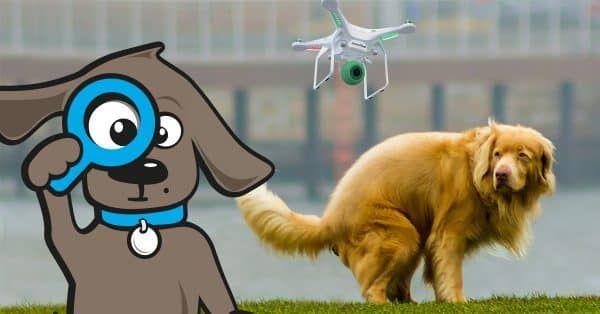 hondenpoep-dogdrones