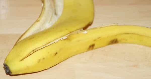 bananenschil mag een hond