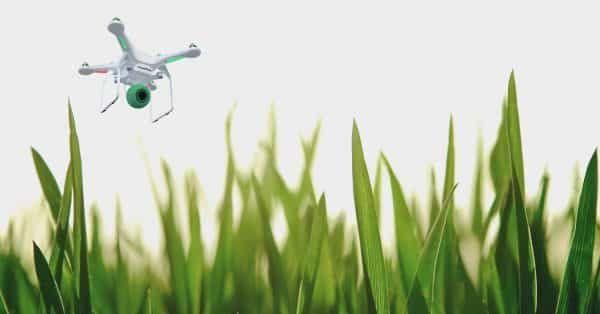 dog drone hondenpoepprobleem