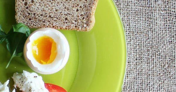 mag een hond gekookt ei