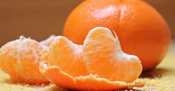 mandarijn mag een hond