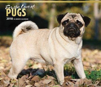 hondenkalender