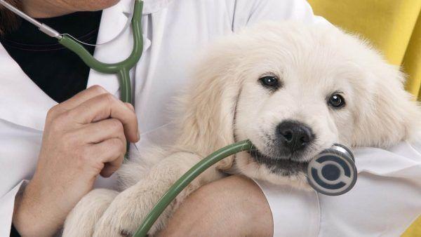 Inentingen