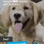 puppy boek 1
