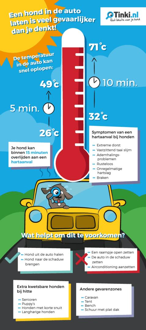 infographic-hond-in-auto-bij-warm-weer