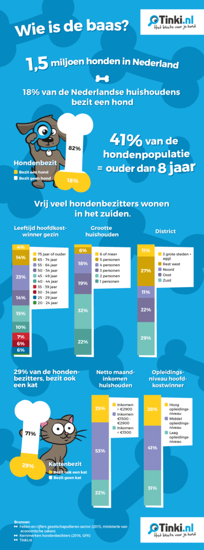 infographic-wie-is-de-baas