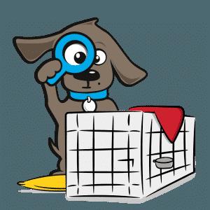 hond aanschaffen