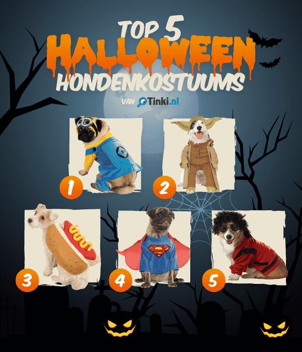 Top 5 Halloween kostuums voor de hond
