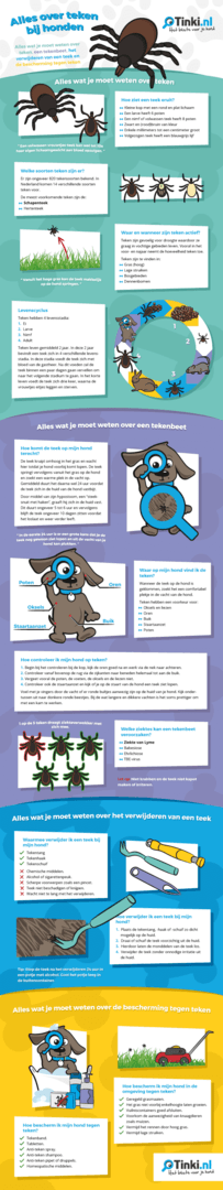 infographic_alles_over_teken_bij_honden