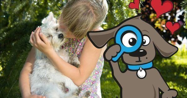 leren-van-onze-eigen-honden