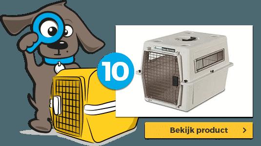 hond-mee-in-vliegtuig-top-10-nr-10