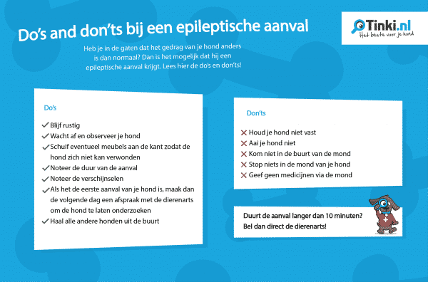 epileptische aanval bij de hond