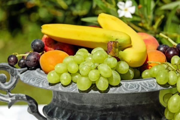 mag hond fruit eten