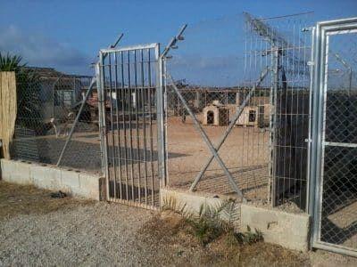 Grote ren van het asiel in Spanje