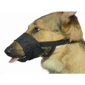 muilkorf hond